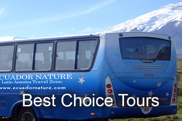 Best Choice Tour